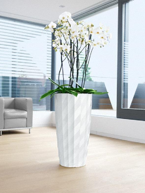 addi_diamante_40_w_phalaenopsis_large
