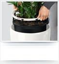 bepflanzung_leicht_wechseln_normal