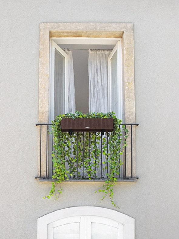 addi_balconera_cottage_80_mok_hedera_helix_large
