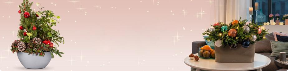 teaser_home_head_advent-1