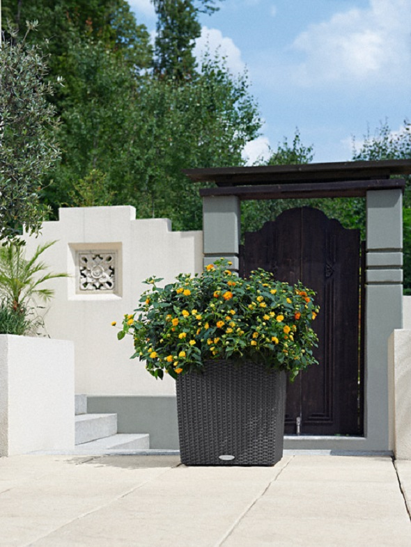 addi_cube_cottage_40_gra_lantana_large