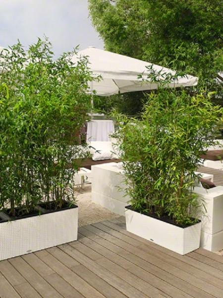 addi_trio_cottage_40_30_2_w_bambus_large