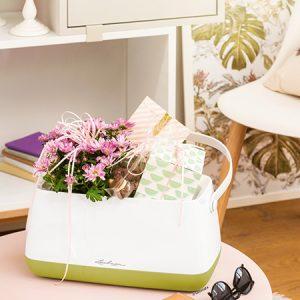 Yula krepšys